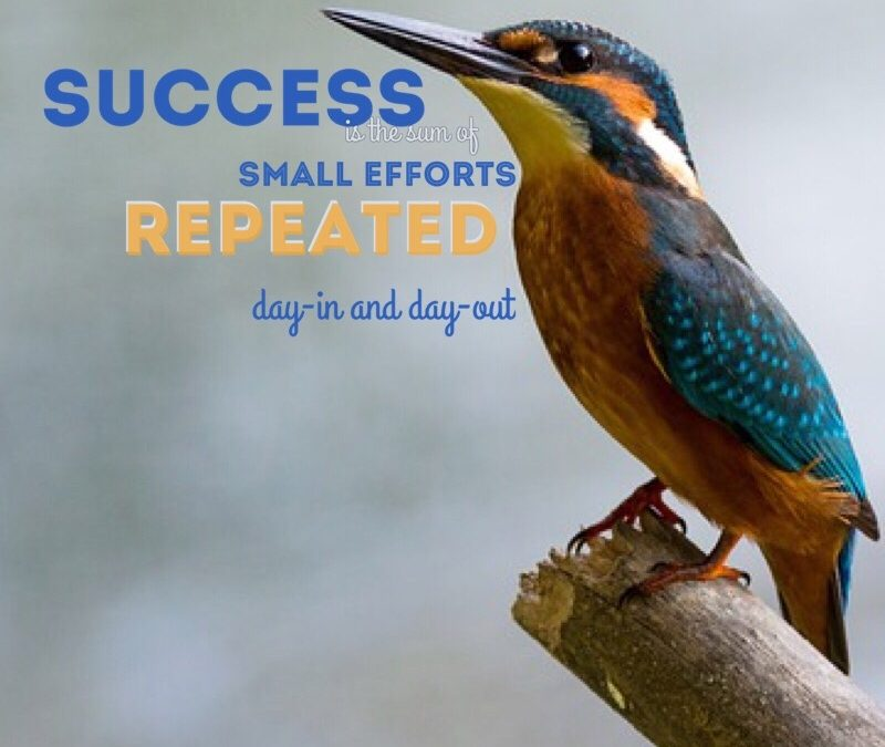 Success is the sum of small efforts repeated day-in and day-out.